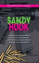 SANDY HOOK: A Critical Analysis of the Media's Pathetic Journalistic Practices and How They Spawned a Wave of Alternate Conspiracy Theories